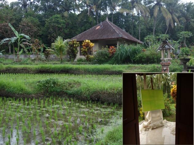 Bali studio